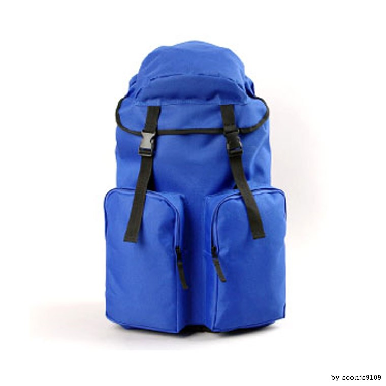 Dmm 빅백팩 캐쥬얼백팩 등산배낭 여행가방 학생가방