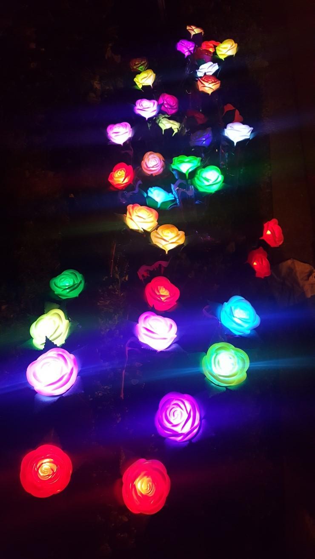 LED장미 도매냅니다