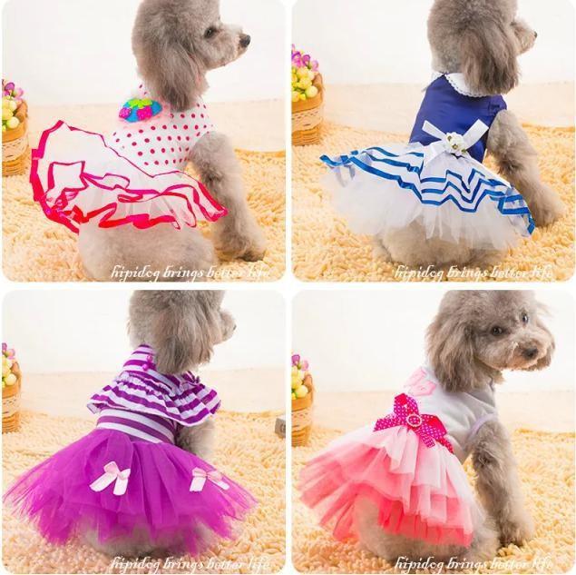 귀여운 강아지옷입니다