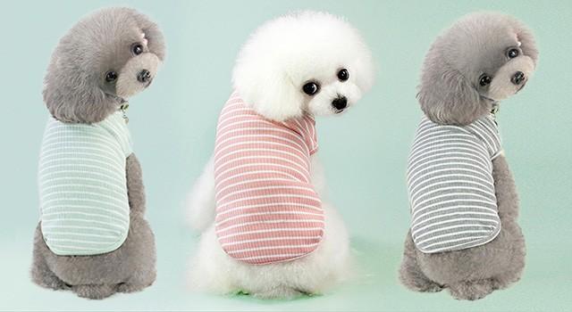 강아지 줄무늬 티셔츠