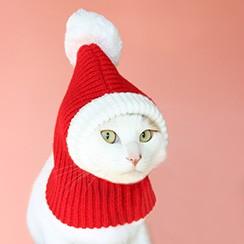 강아지 고양이 산타모자