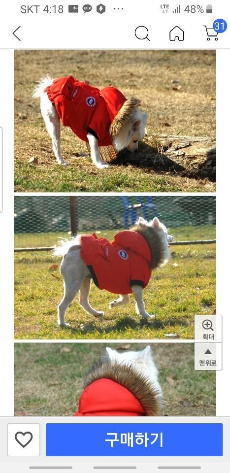 강아지옷 4.200원  땡처분 합니다.