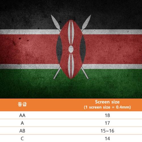 케냐AA100% 싱글