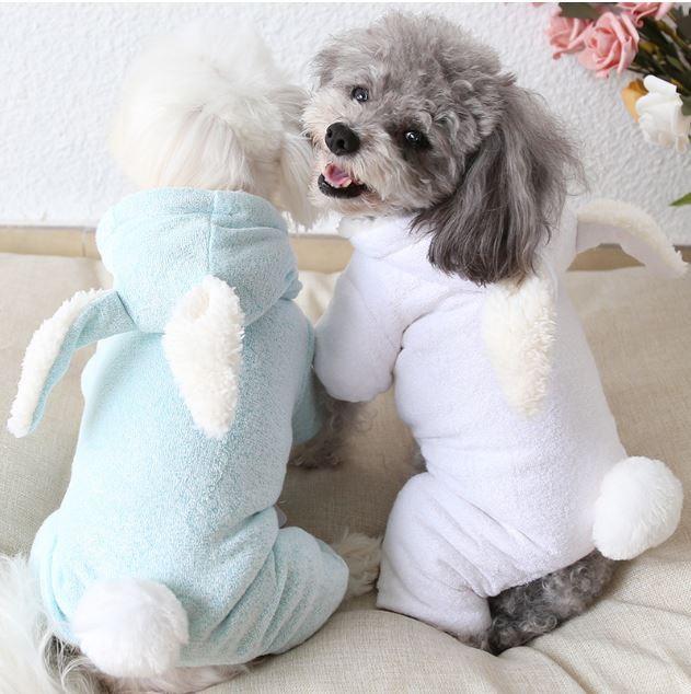 [꽁아지용품]강아지의류