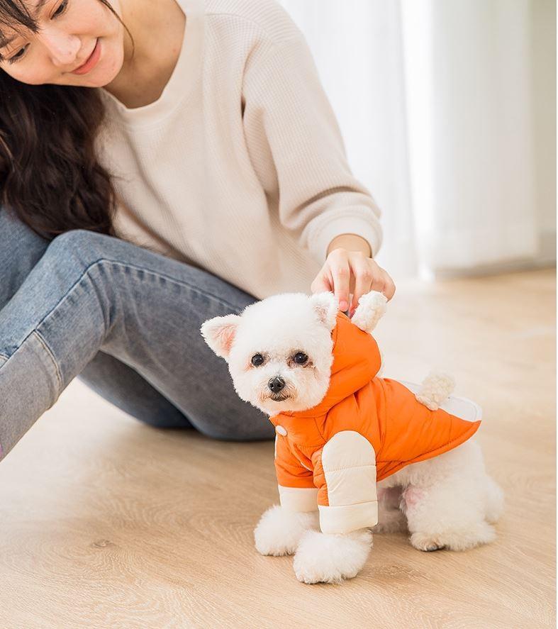 강아지 패딩옷