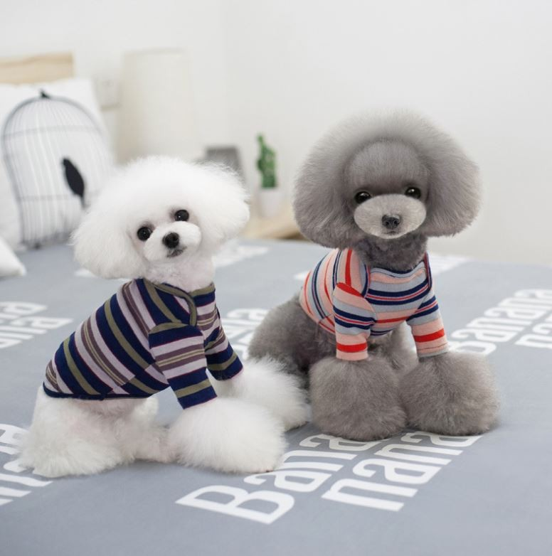 애견의류/강아지옷