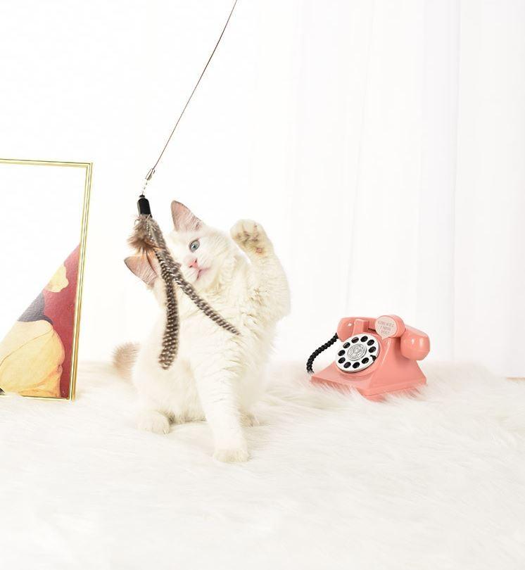 깃털민트 낚싯대 고양이 장난감