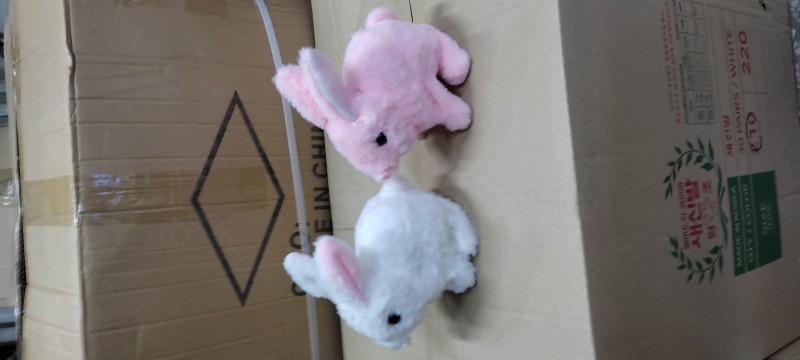 움직이는 토끼