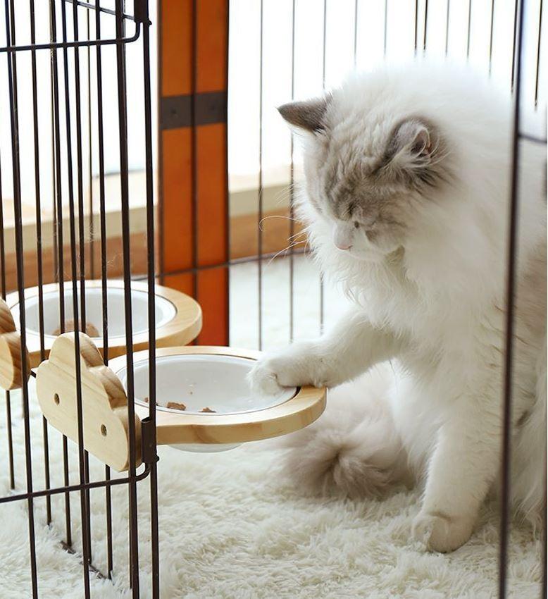 고양이용 세라믹 식판 그릇