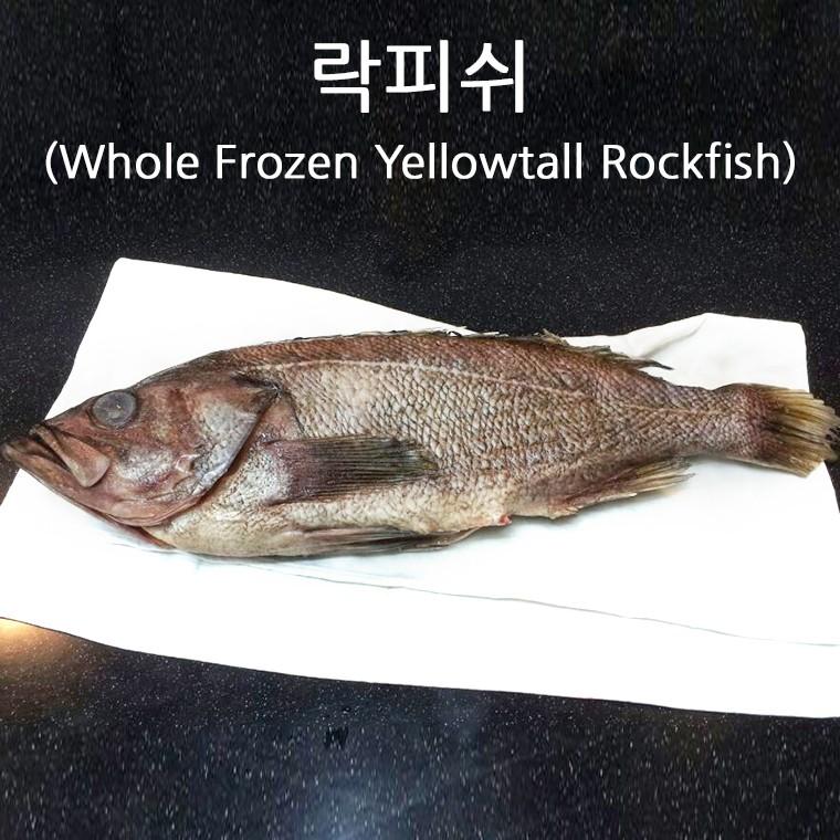 냉동홀락피쉬(Whole Frozen Yellowtail Rockfish)