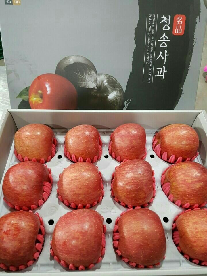 직접농사지은청송꿀사과.사과즙