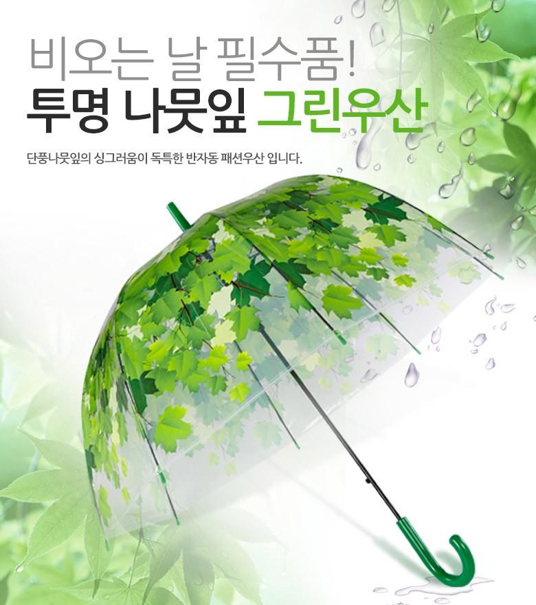 우산 투명그린우산 비 가을장마