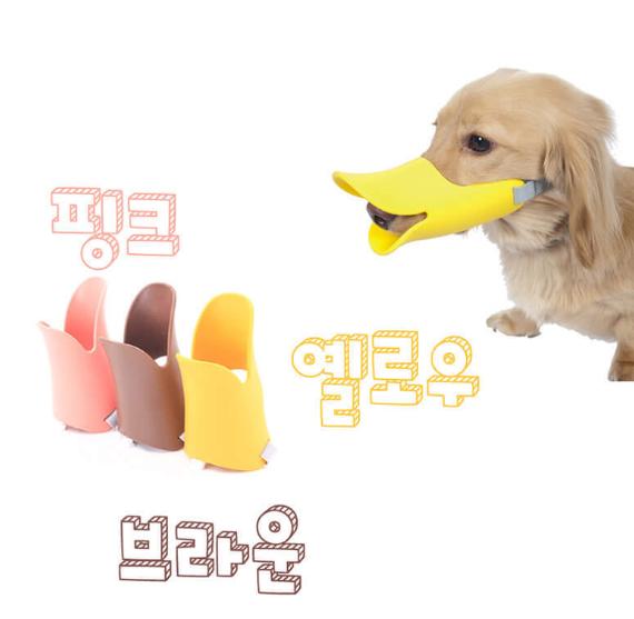 오리마스크/애견마스크/애완용품