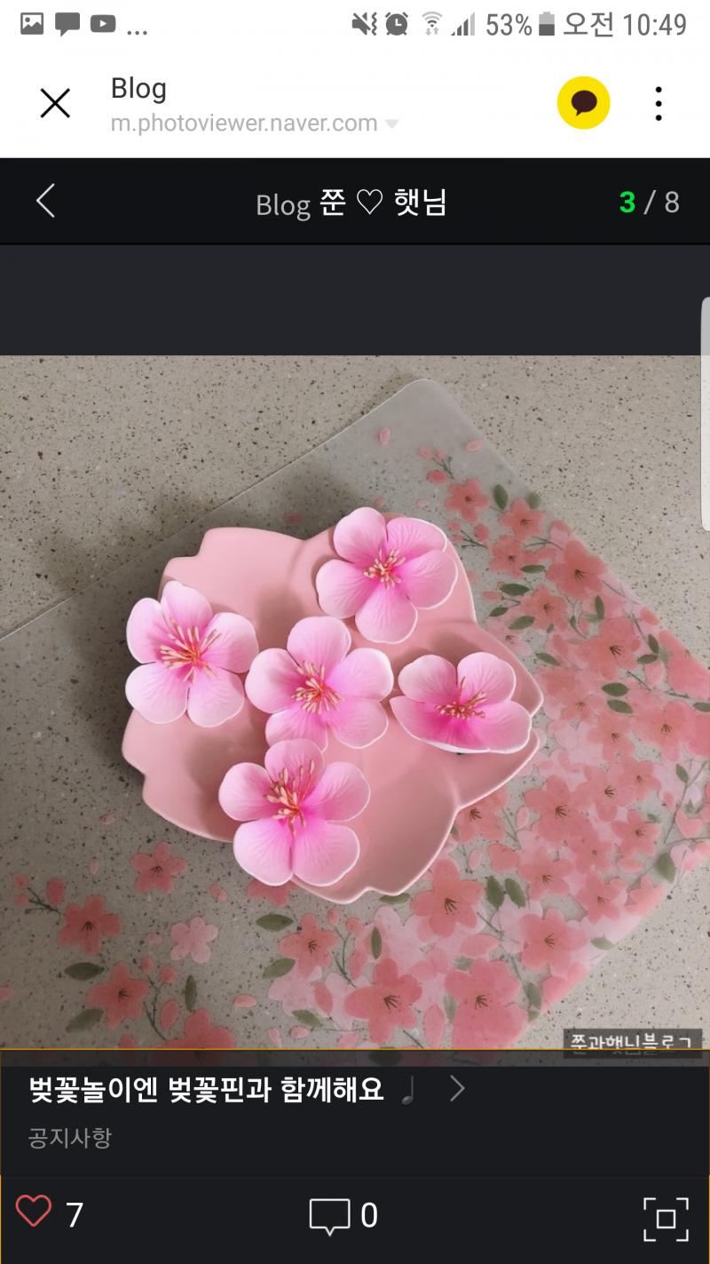 벚꽃축제 벚꽃핀