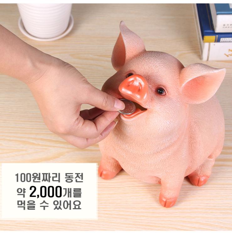 [완사]부자되는 리얼돼지저금통