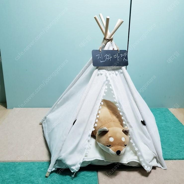 강아지 인디언 텐트